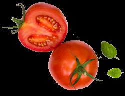 naturalmente-tomate